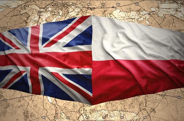 Polacy są w czołówce, jeśli chodzi o liczbę przedsiębiorstw zakładanych w Wielkiej Brytanii /©123RF/PICSEL