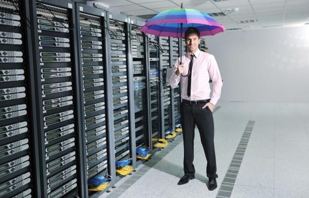Polacy stają się supersiłą w świecie IT /123RF/PICSEL