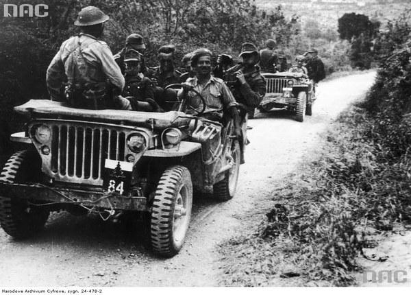 2 Korpus Polski w bitwie o Ankonę - po zakończeniu walk. Transport jeńców niemieckich samochodami Willys MB 3 Dywizji Strzelców Karpackich