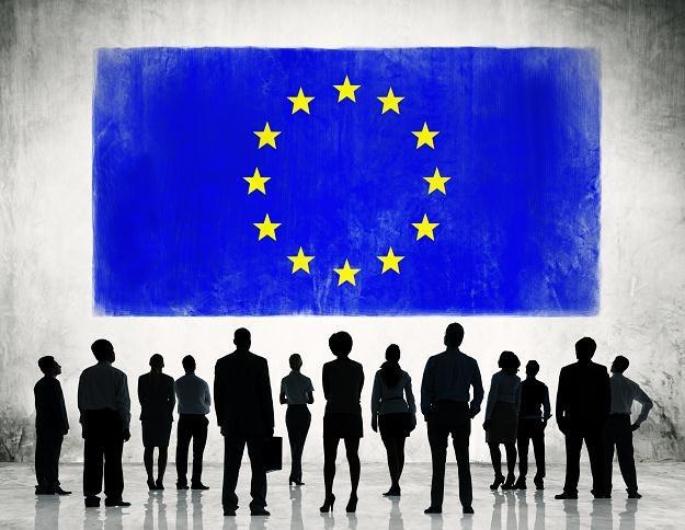 Polacy w strukturach Parlamentu Europejskiego /©123RF/PICSEL