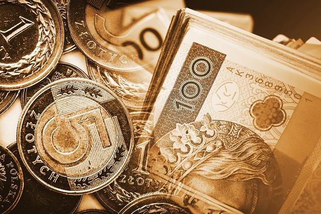 Polacy wciąż cenią gotówkę /©123RF/PICSEL