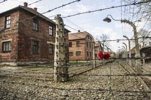 Polacy współwinni Holocaustu? Ostra reakcja polityków i ambasady