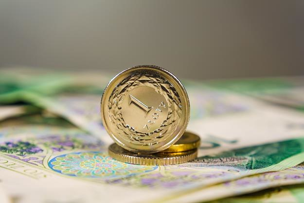 Polacy zadłużają się na coraz wyższe kwoty /©123RF/PICSEL