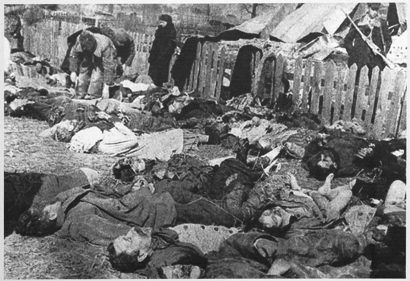 Polacy zamordowani przez UPA we wsi Lipniki w 1943 roku /Agencja FORUM