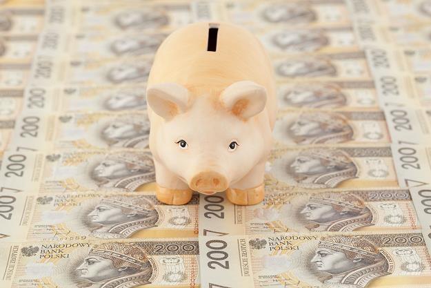 Polak już oszczędza, ale inwestować nie umie /©123RF/PICSEL