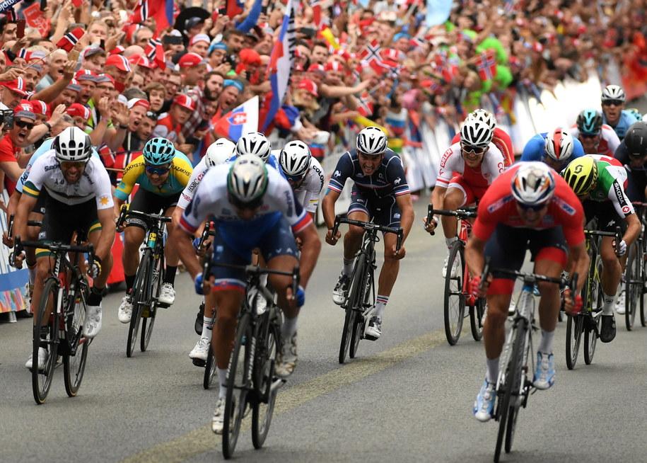 Polak Michał Kwiatkowski (w głębi, biało-czerwony strój) na finiszu wyścigu ze startu wspólnego elity mężczyzn podczas kolarskich mistrzostw świata w norweskim Bergen /Bartłomiej Zborowski /PAP