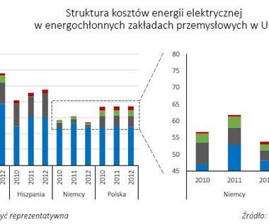 Polak produkuje mniej za więcej - skąd taka energochłonność?