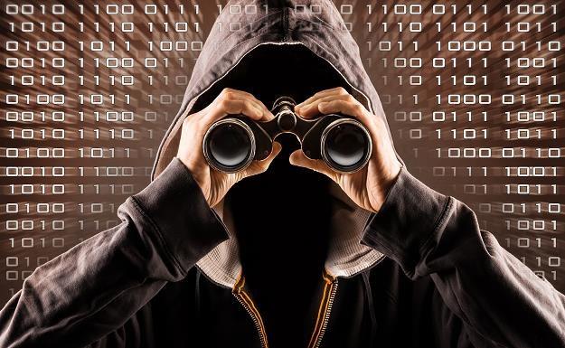 Polak skazany na 6,5 roku więzienia za ataki hakerskie na dużą skalę /©123RF/PICSEL