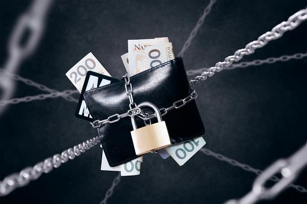 Polaks może pozostać z własną walutą? /©123RF/PICSEL