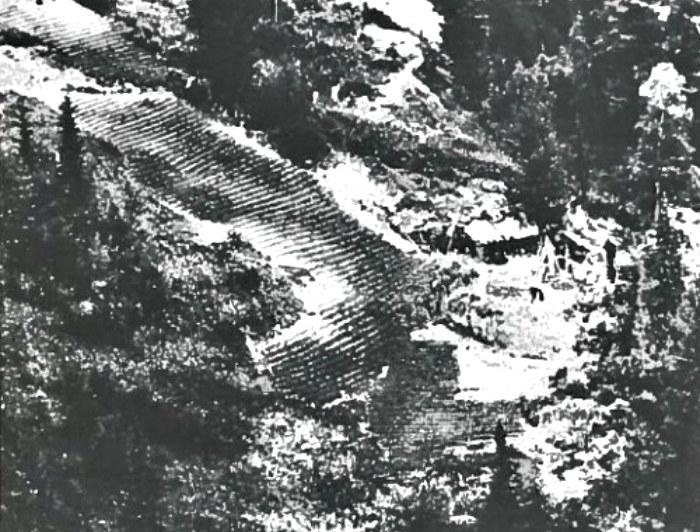 Pole uprawne w środku syberyjskiej tajgi - zdjęcie zrobione z rosyjskiego helikoptera, który odkrył obecność Łykowów /smithsonianmag.com /materiały prasowe
