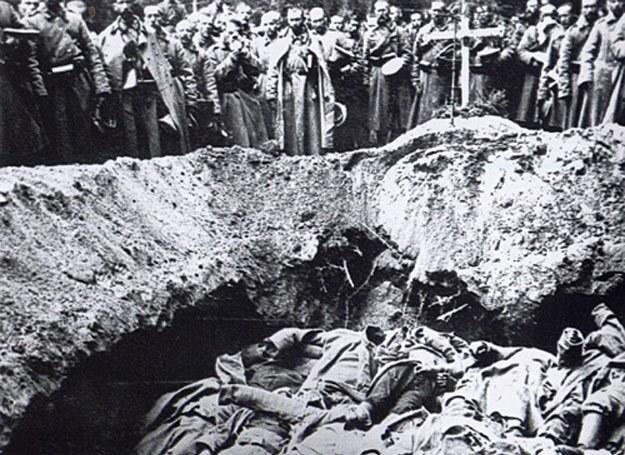 Poległych żołnierzy układano warstwami w zbiorowych mogiłach i posypywano wapnem /Odkrywca