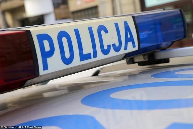 Policja, fot. Damian Klamka /East News