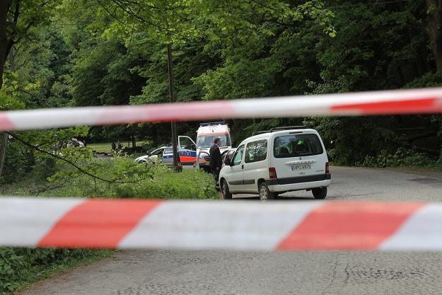 Policja i pogotowie na miejscu wypadku w Ojcowskim Parku Narodowy/fot. Jacek Bednarczyk /PAP