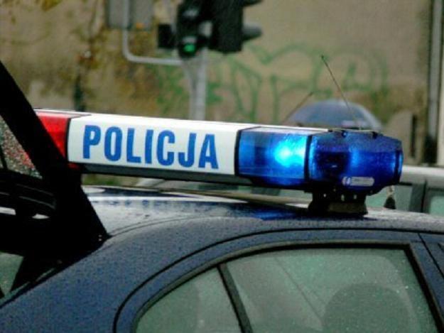 Policja odnalazła dzieci /fot. T. Piekarski /MWMedia