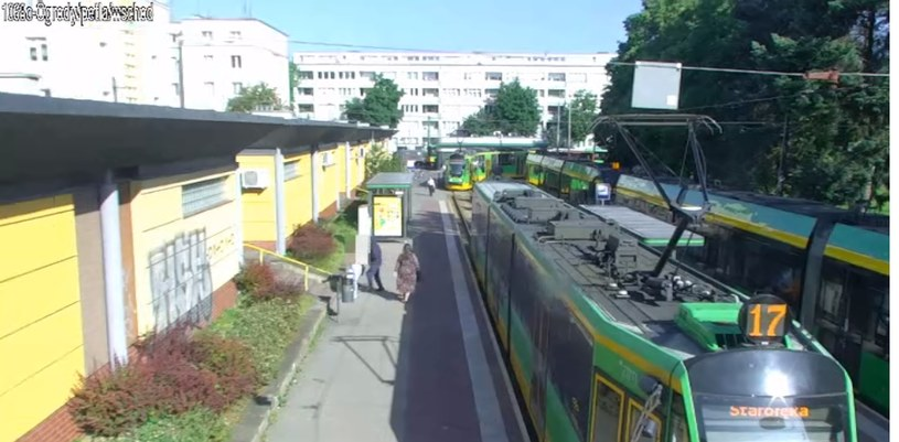 Policja opublikowała nagranie z zajścia /KMP Poznań /facebook.com