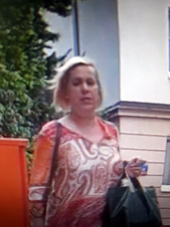 Policja opublikowała wizerunek podejrzanej kobiety /Policja