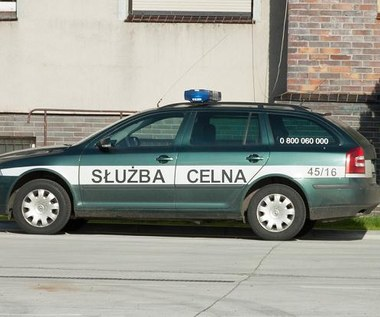 Policja, strażnicy, inspektorzy i celnicy. A kierowcy płacą!