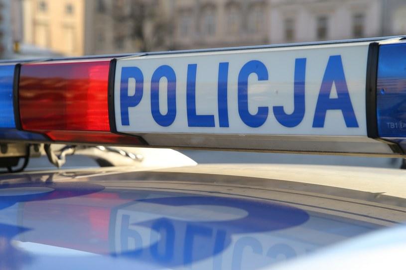Policja w nocy ścigała 16-letniego kierowcę /Damian Klamka /East News