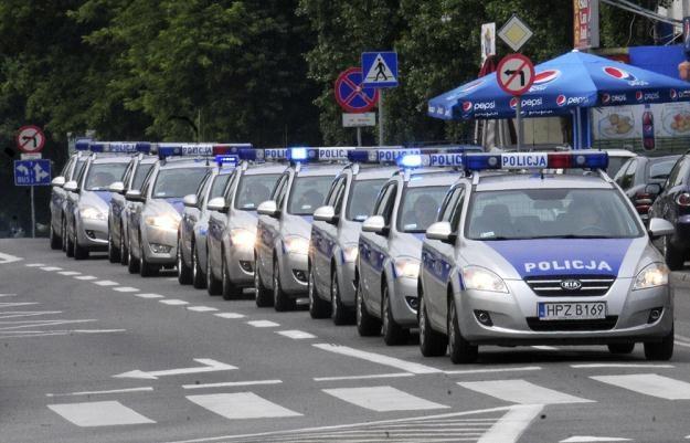 Policja zamierza wynająć aż 10 tys. radiowozów / Fot: Włodzimierz Wasyluk /Reporter