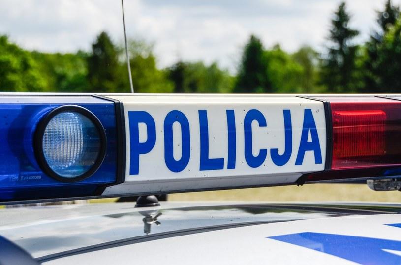 Policja zatrzymała młodego kierowcę w miejscu zamieszkania /Gerard /Reporter