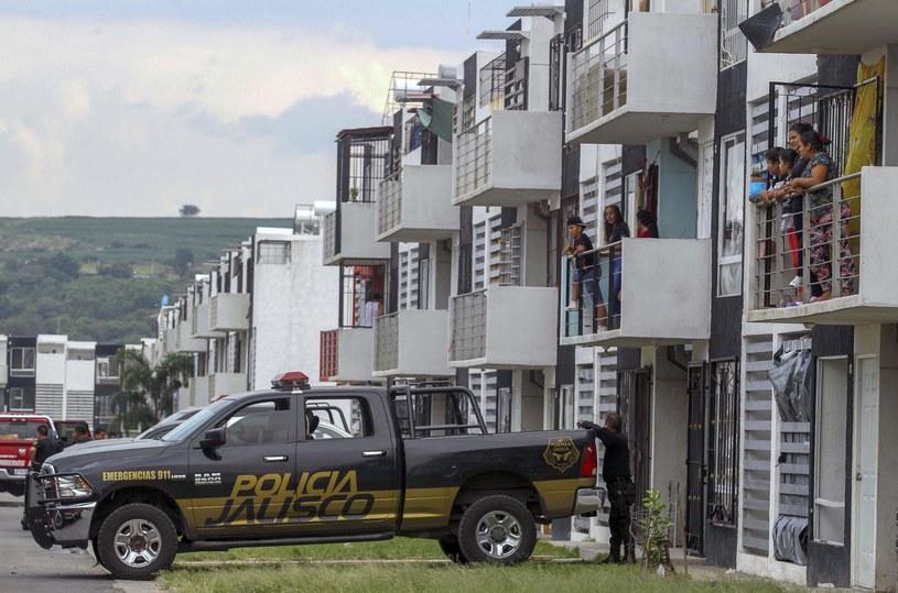 Policja, zdj. ilustracyjne /AFP