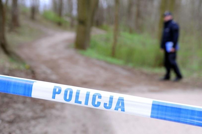 Policja, zdjęcie ilustracyjne /Przemek Świderski /East News