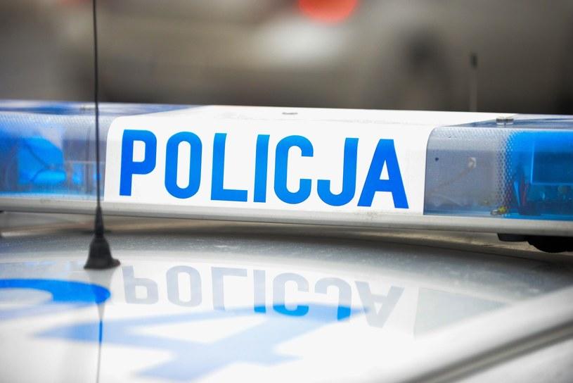 Policja, zdjęcie ilustracyjne /Piotr Kamionka /Reporter