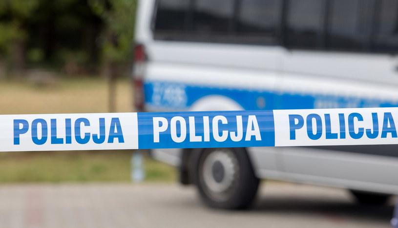 Policja; zdjęcie ilustracyjne /Fot Tomasz Jastrzebowski /Reporter