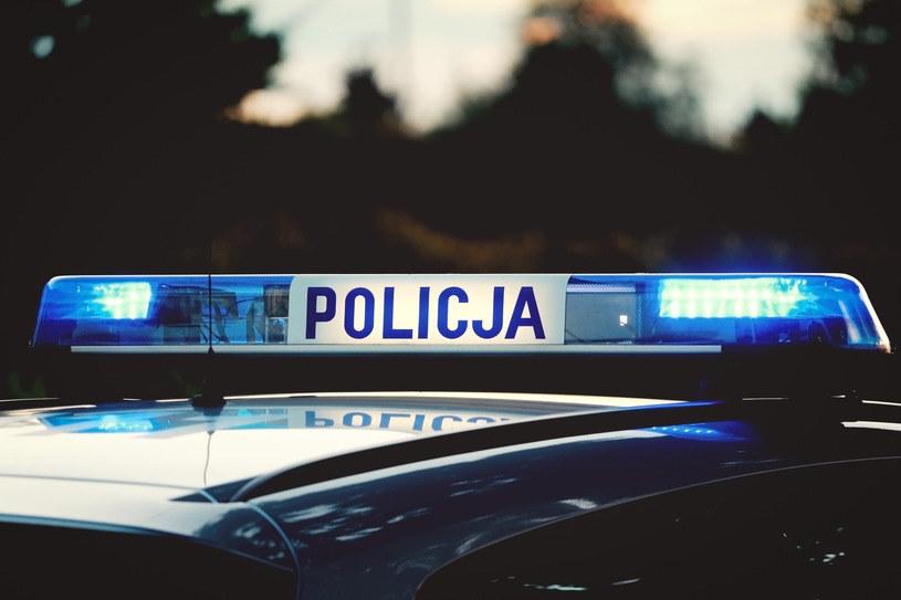 Policja, zdjęcie ilustracyjne /123RF/PICSEL
