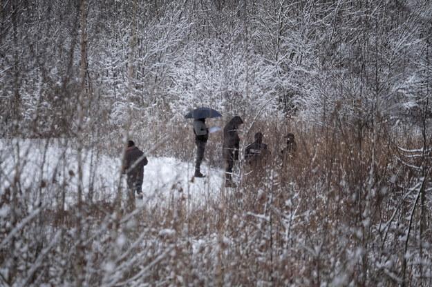 Policjanci i prokuratorzy podczas oględzin miejsca w Piekarach Śląskich, w którym znaleziono ciało 13-letniej Patrycji / Andrzej Grygiel    /PAP