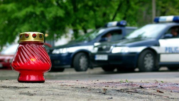 Policjanci - jak każdy z nas - czasem popełniają błędy/fot. Adam Slowikowski /Reporter