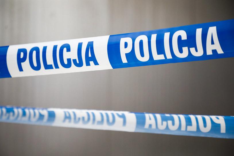 Policjanci pod nadzorem prokuratury prowadzą działania zmierzające do ich identyfikacji, zdj. ilustracyjne /Beata Zawrzel /Reporter