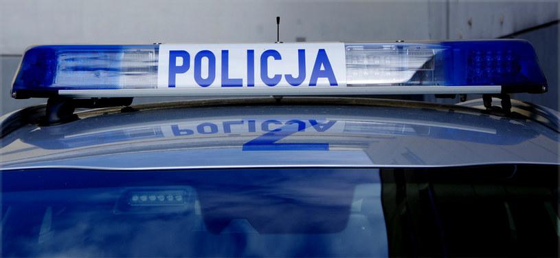 La policía viajará con aficionados a Rusia y España / Marek Pasak / Eastern News / Eastern News