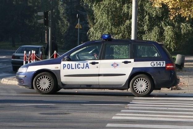 """Policjanci wciąż lubią chować się """"w krzakach"""" /INTERIA.PL"""