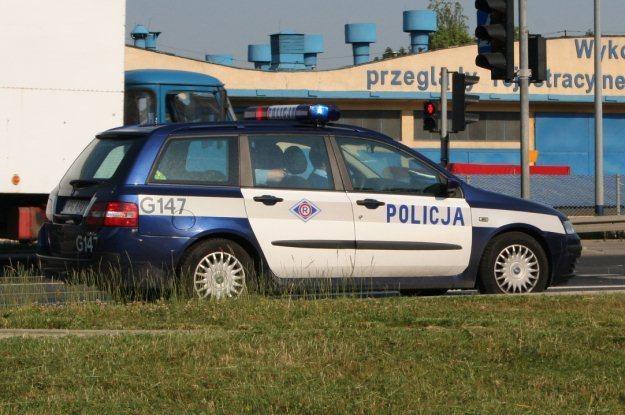 Policjanci z radiowozu będą mogli sprawdzić wszystkie dane /INTERIA.PL