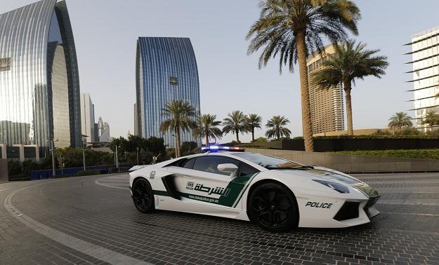 Policyjny Aventador w Dubaju /AFP