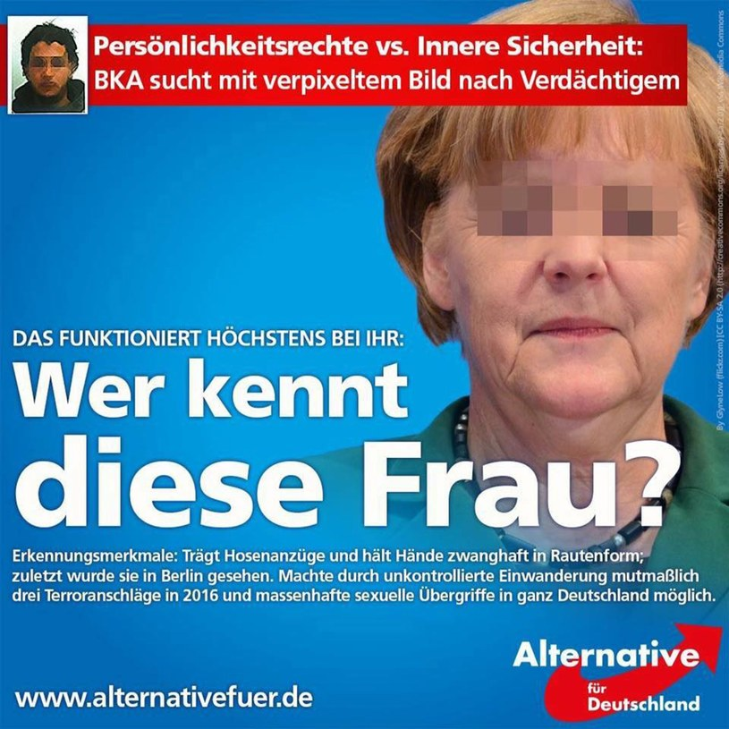 Polityka Angeli Merkel przyciągneła do AfD polityków o umiarkowanych poglądach /    CEN / AfD Essen /East News