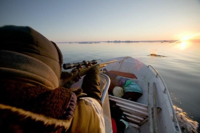 Polowanie jest niezwykle ważną częścią życia Inuitów /East News