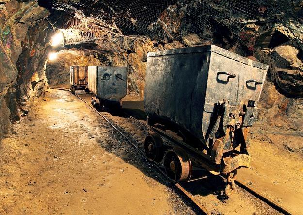 Polsce coraz trudniej będzie chronić kopalnie /©123RF/PICSEL