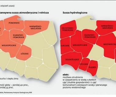 Polsce grozi susza. Kilkaset gmin wnioskuje o budowę zbiorników retencyjnych