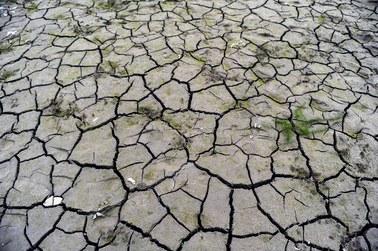 Polsce grozi susza