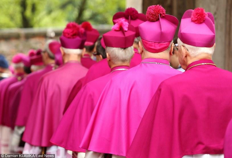 Polscy biskupi /Damian Klamka /East News