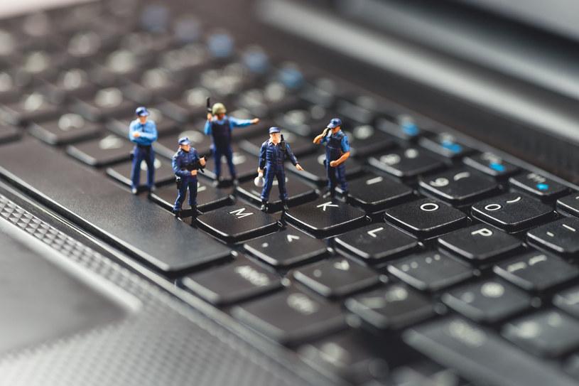 Polscy cyberpolicjanci mają pełne ręce roboty - coraz więcej osób dokonuje tego typu przestępstw w naszym kraju /123RF/PICSEL