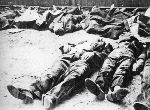 Polscy cywile zamordowani na warszawskiej Woli (fot. Miasto Nieujarzmione, Warszawa: Iskry, 1957) /Wikimedia