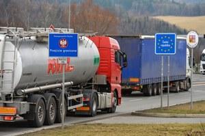 Polscy kierowcy pod lupą europejskich służb kontrolnych