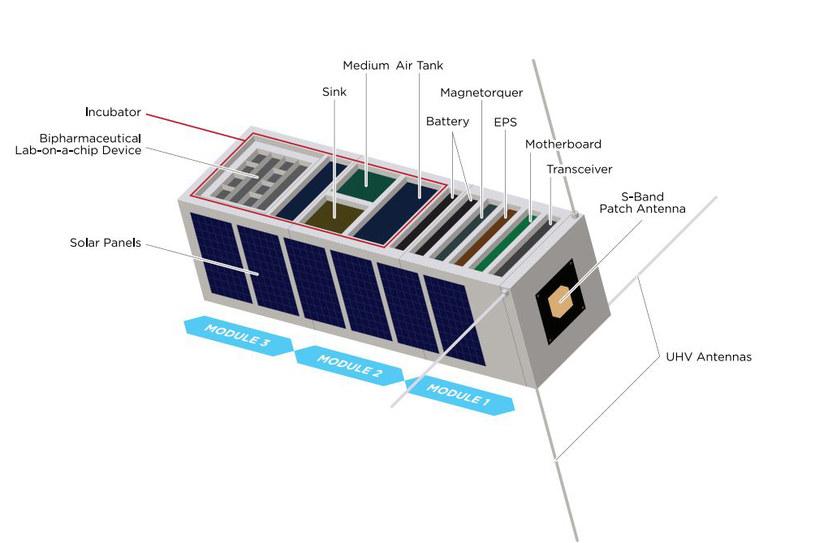 Polscy naukowcy przygotowują satelitę do testowania leków i obserwacji komórek nowotworowych w kosmosie /materiały prasowe