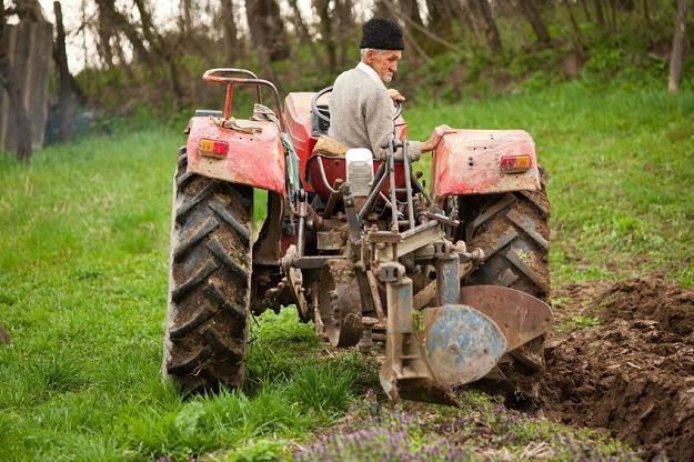 Polscy rolnicy są nawet za Rumunami /©123RF/PICSEL