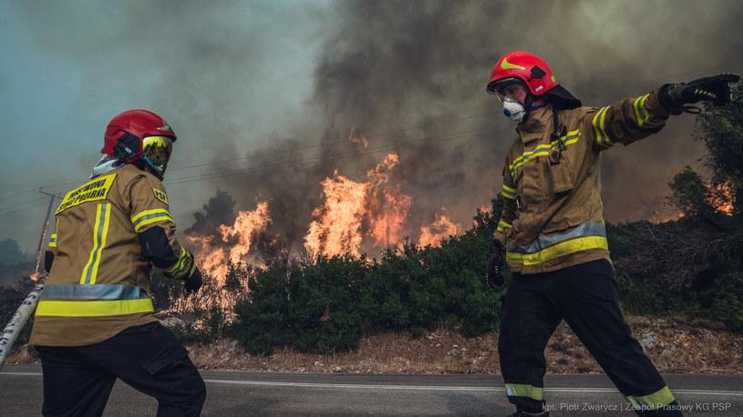 Polscy strażacy w Grecji /@MSWiA_GOV_PL /Twitter
