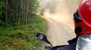 Polscy strażacy w Szwecji: W piątek uroczyste pożegnanie, szykujemy się do wyjazdu