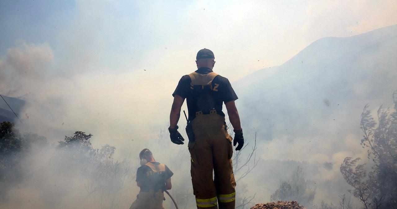 """""""Polscy strażacy wykonują niezwykłą robotę"""". Premier Grecji podziękował za pomoc"""